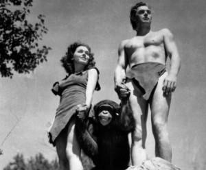 Cheetah the chimp dies at 80